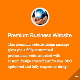 Premium Business Website