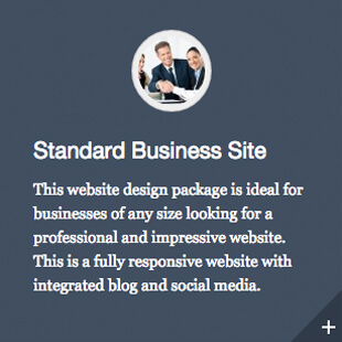 Standarad Business Website